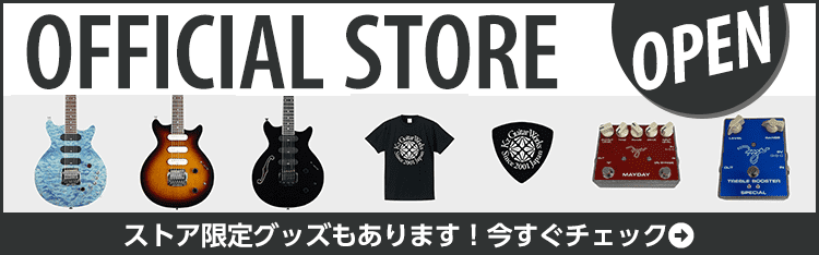 Kz Guitar Works Official Store